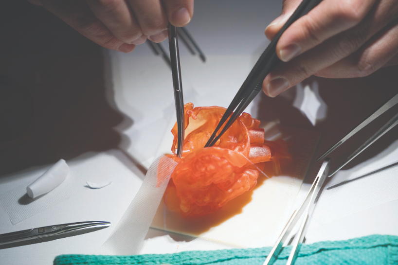 Surgeons practice suturing on a Stratasys advanced medical models 3D printed heart model.