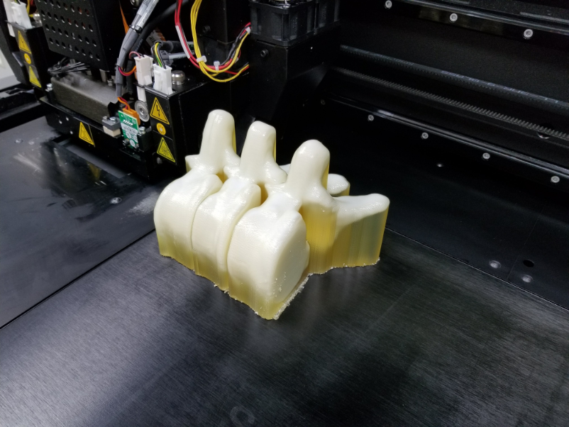 3D printed vertebrae for testing.