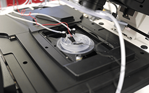 Researchers at the University of Wollongong used FDM and PolyJet 3D printing technologies to build different parts of this watertight and airtight perfusion chamber in a microscope.